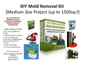 World best ultra powerful ozone equipment and business systems for the basics of our all natural family safe diy mold removal system solutioingenieria Images