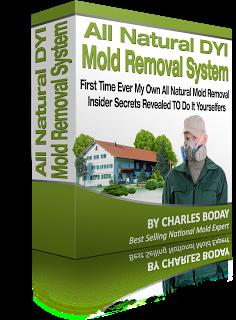 ozone machine mold removal